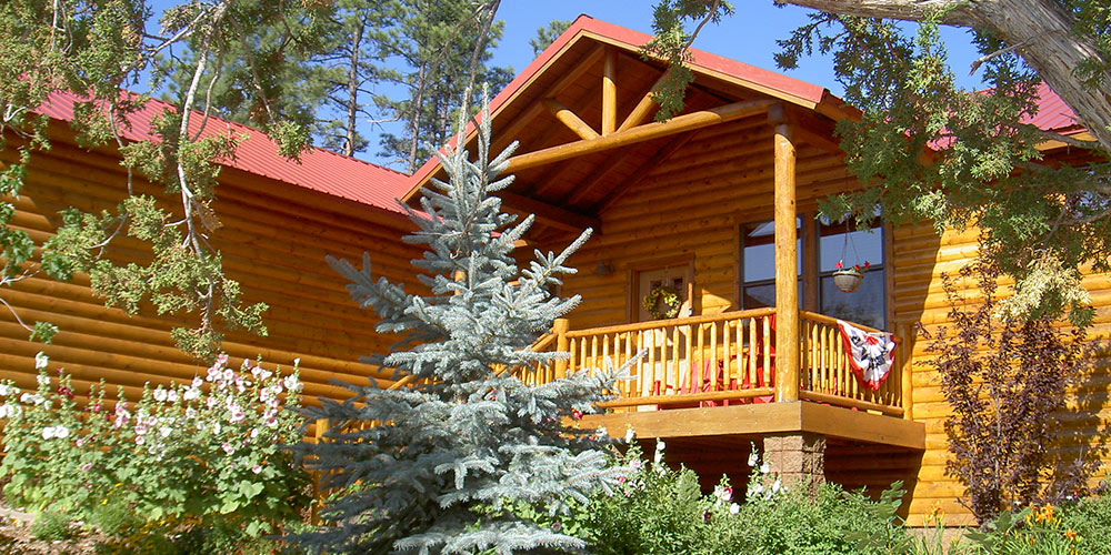 arizona az pinetop low show and cleaning rentals rental vacation cabins cabin fireplace